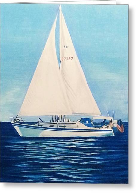Sailing On The Calm Seas Greeting Card