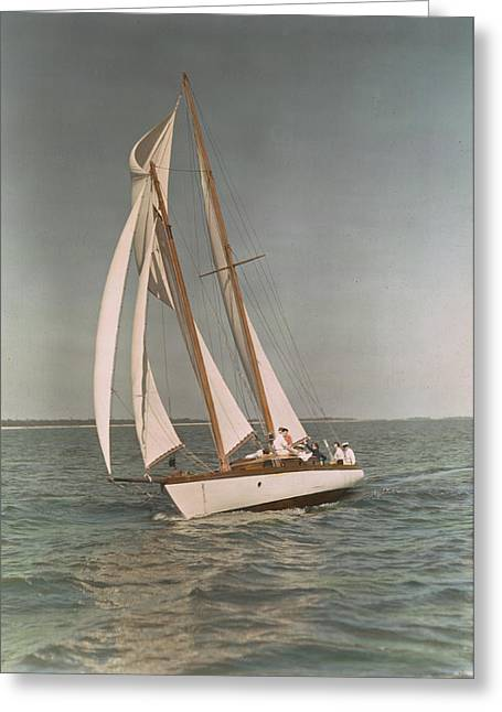 Sailing, One Of The Many Sports Greeting Card by J. Baylor Roberts