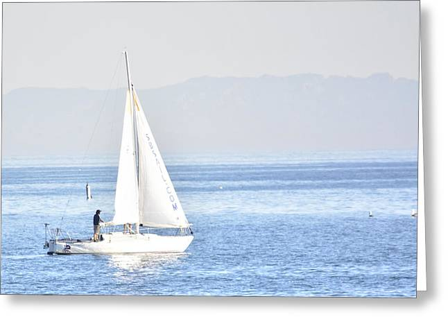 Sailing Peace Greeting Card
