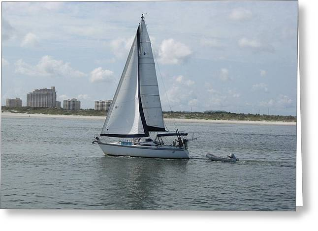 Sailing Ponce Inlet Florida Greeting Card by Brian Johnson
