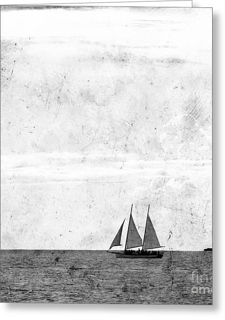 Sailing Greeting Card by Rebecca Cozart