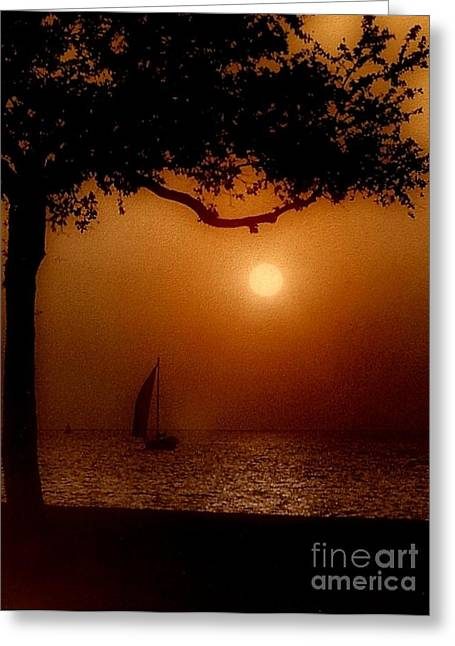Sailing Sunset Greeting Card by Michael Hoard