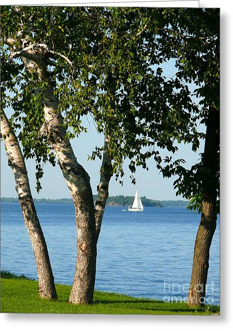 Sailing The Lake Greeting Card