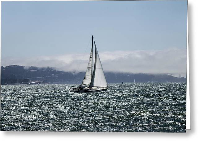Sailing The Sf Bay Greeting Card by Dee  Savage