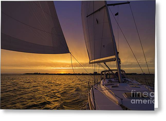 Sailing Yacht Sunset Charleston South Carolina Skyline Greeting Card by Dustin K Ryan