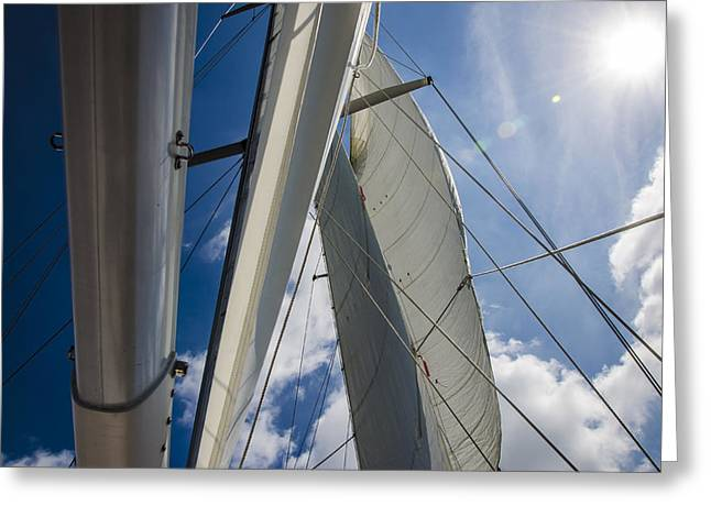 Sailing's Perfect Breeze  Greeting Card