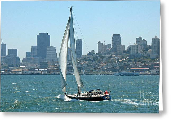 Sailors View Of San Francisco Skyline Greeting Card by Connie Fox