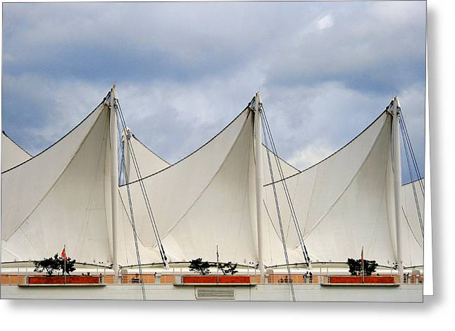 Sails Greeting Card by Alison Miles
