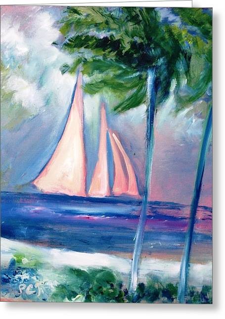 Sails In The Sunset Greeting Card by Patricia Taylor
