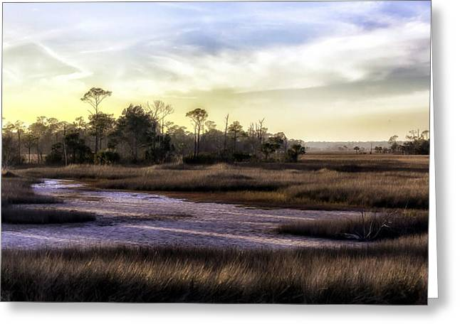 Saint Marks Wetland Sunset Greeting Card