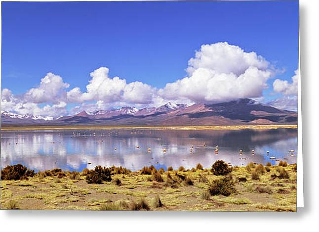 Salar De Surire (app 4300m Greeting Card by Martin Zwick