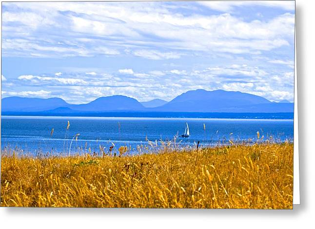 Salish Sea From Hornby Island Greeting Card by Brian Sereda