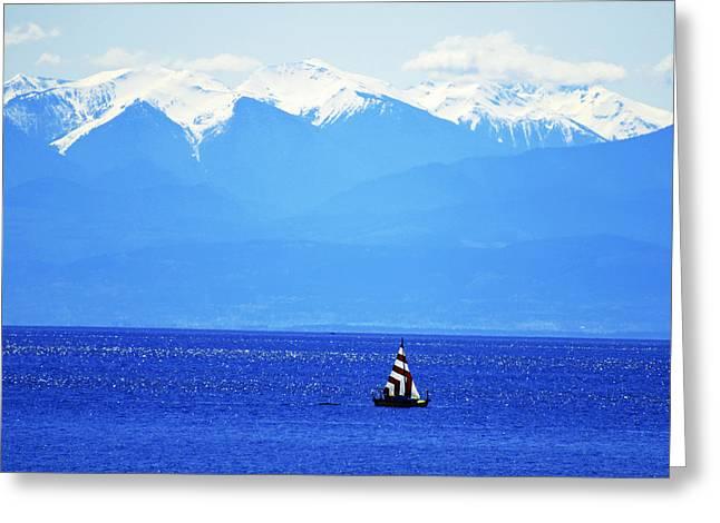 Salish Sea Sail Greeting Card by Annie Pflueger