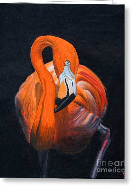 Sally The Flamingo Greeting Card by Jane Axman