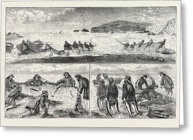 Salmon Fishing Fishing Salmon, Mouth Of The River Tivey Greeting Card by English School