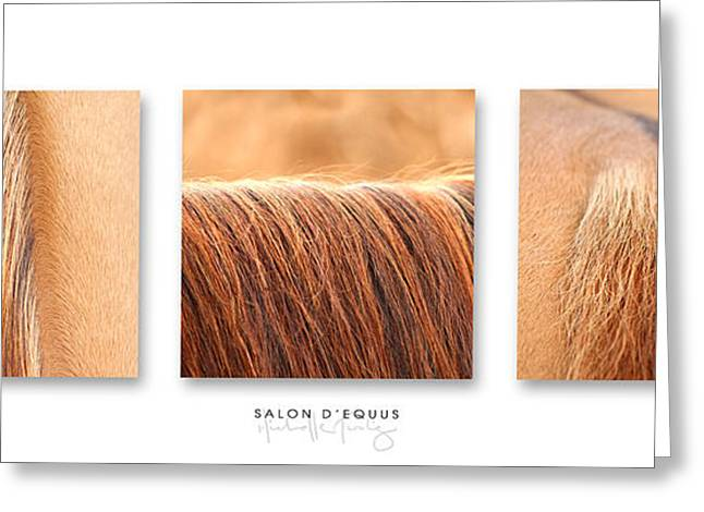 Salon D'equus Light Greeting Card