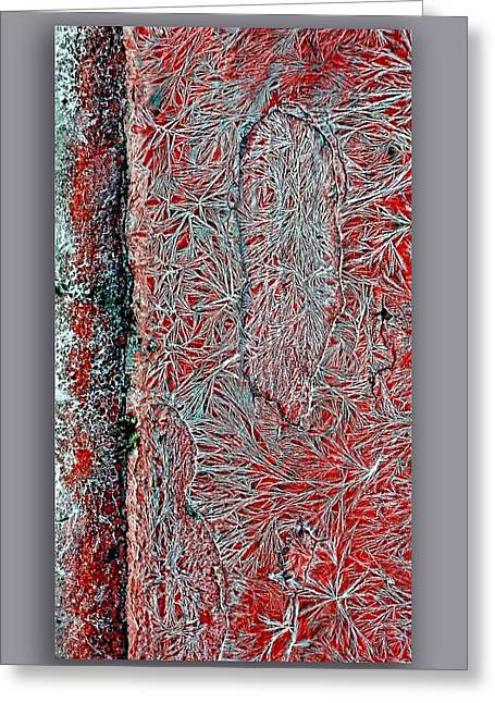 Salt Cystals Greeting Card by Dennis Weiser