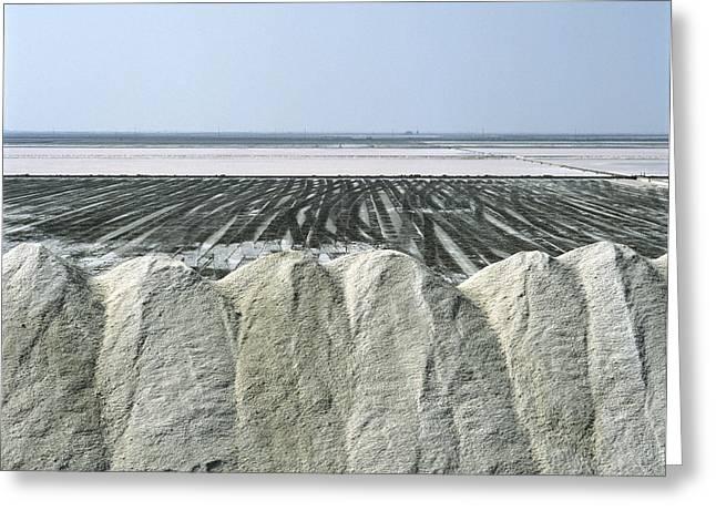 Salt Marsh Greeting Card