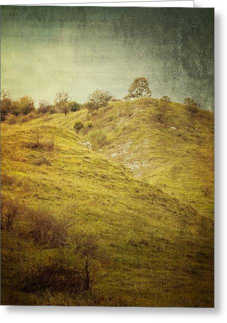 Salt Meadow Mounds Greeting Card
