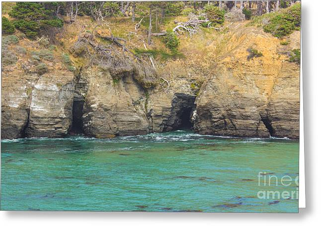 Salt Point Sea Caves Greeting Card