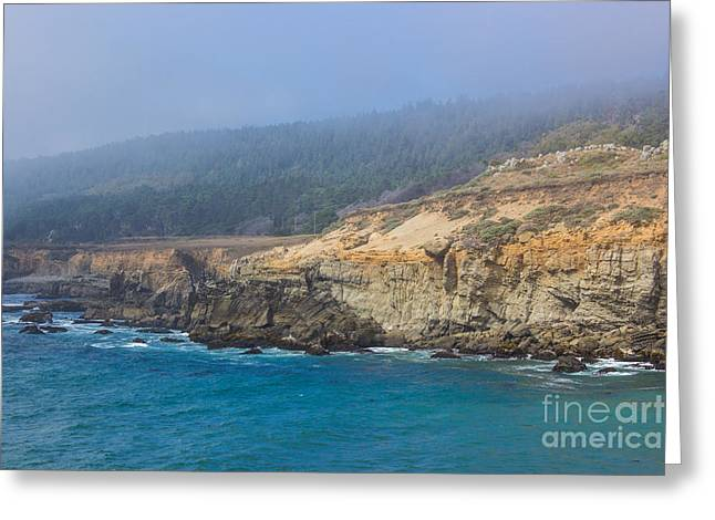 Salt Point State Park Coastline Greeting Card