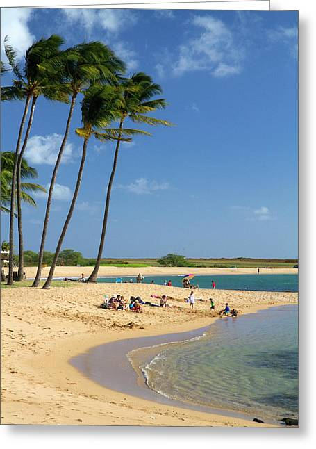 Salt Pond Park Located On The Island Greeting Card