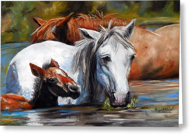 Salt River Foal Greeting Card