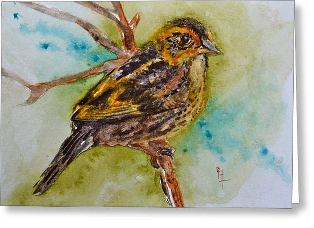 Saltmarsh Sparrow Greeting Card by Beverley Harper Tinsley