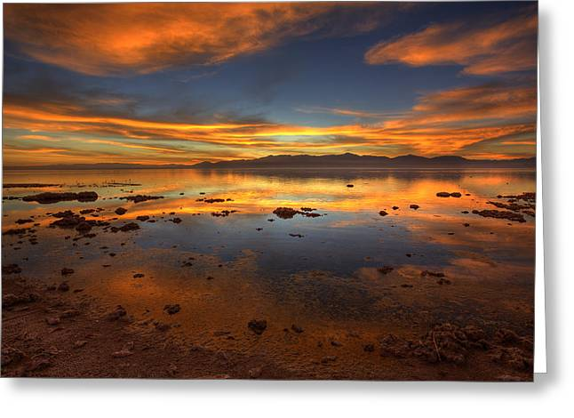 Salton Sea Color Greeting Card by Peter Tellone