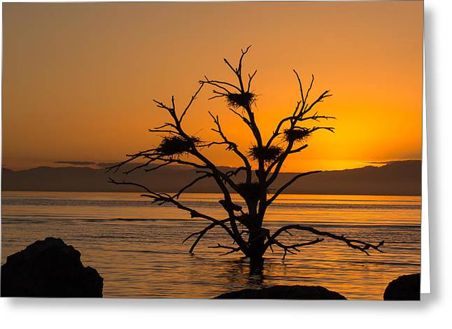 Salton Sea Sunset Greeting Card