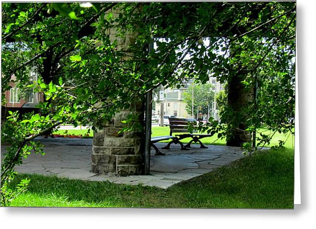 Sam Lawrence Park Hamilton Ontario Canada Greeting Card by Danielle  Parent