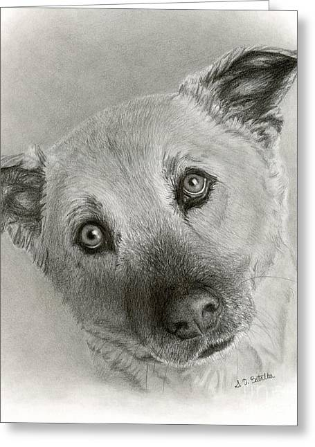 German Shepherd Mix- Sami Greeting Card by Sarah Batalka