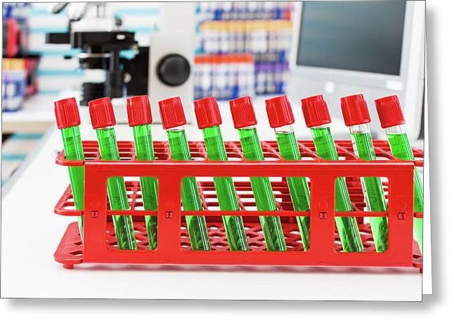 Samples In Test Tubes Greeting Card by Wladimir Bulgar
