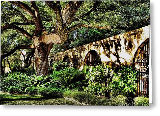San Antonio D Greeting Card by Ken Frischkorn