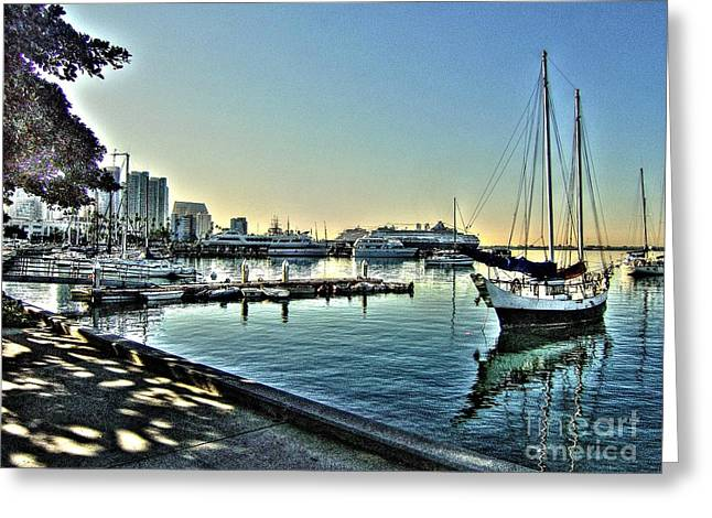 San Diego Harbor Greeting Card by Steven Parker