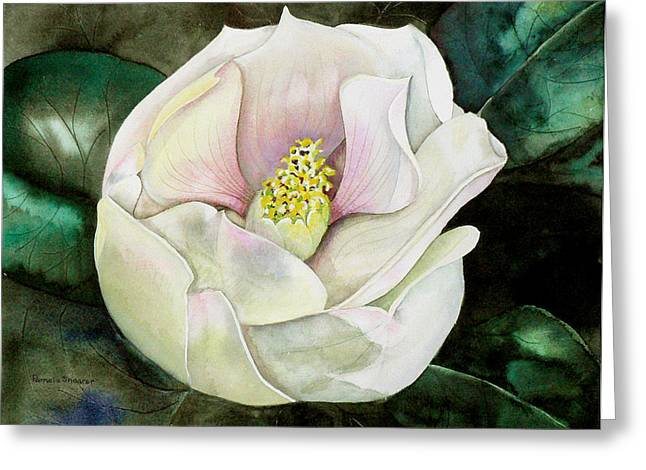 San Diego S Magnolia Greeting Card