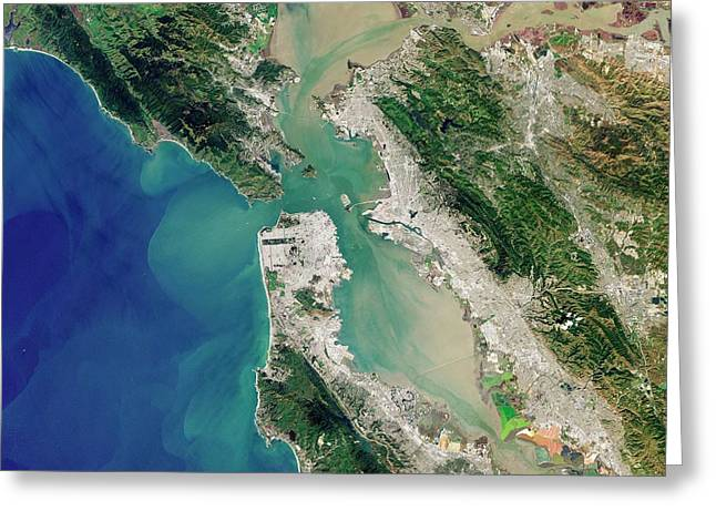 San Francisco Bay Greeting Card by Jesse Allen And Robert Simmon/u.s. Geological Survey/nasa