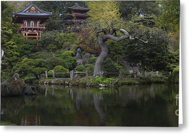 San Francisco Japanese Garden Greeting Card by Mike Reid