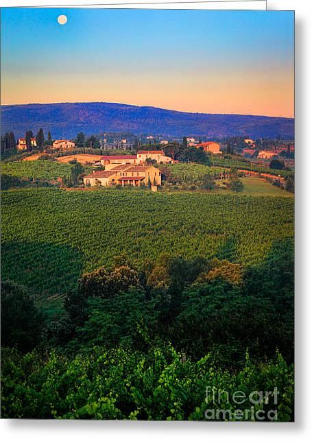 San Gimignano Vineyards Greeting Card by Inge Johnsson