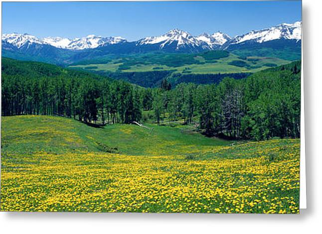 San Miguel Mountains In Spring Greeting Card by Panoramic Images
