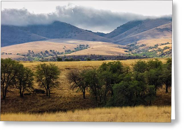 San Rafael Valley Greeting Card by Beverly Parks