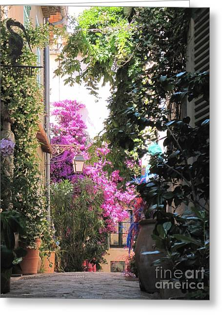 St Tropez Greeting Card