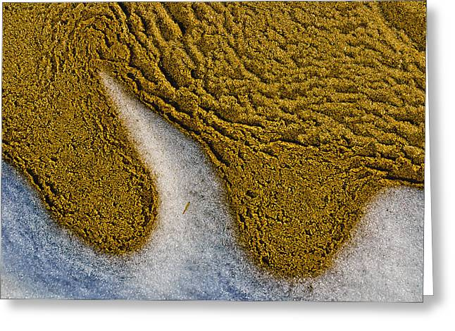 Greeting Card featuring the photograph Sand Abstract by Louis Dallara