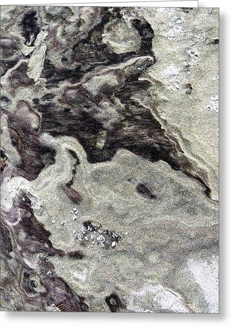 Sand Abstract Greeting Card by Marcia Lee Jones