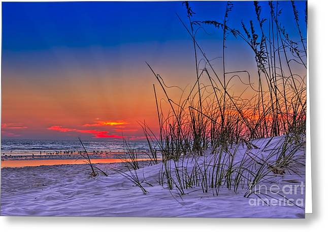 Sand And Sea Greeting Card by Marvin Spates