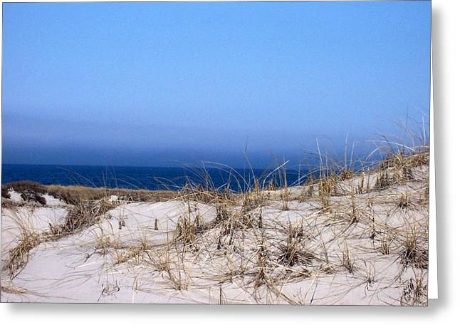 Sand And Sky Greeting Card by Catherine Gagne