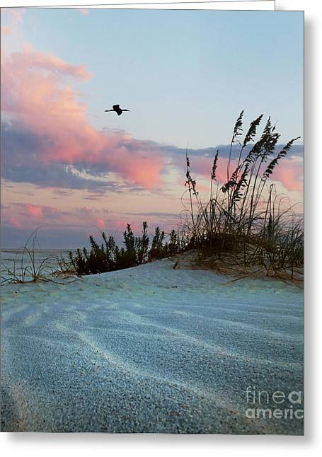 Sand And Sunset Greeting Card by Deborah Smith