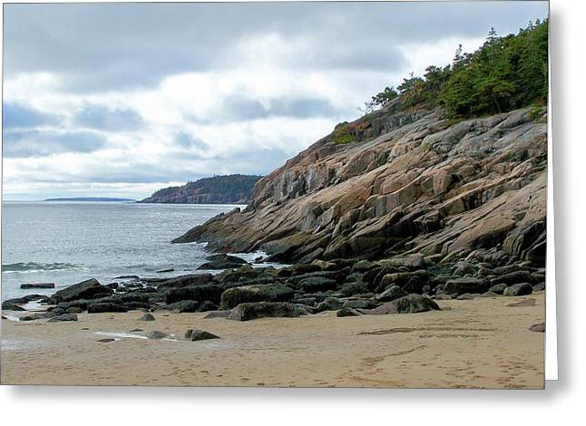 Greeting Card featuring the photograph Sand Beach by Gene Cyr