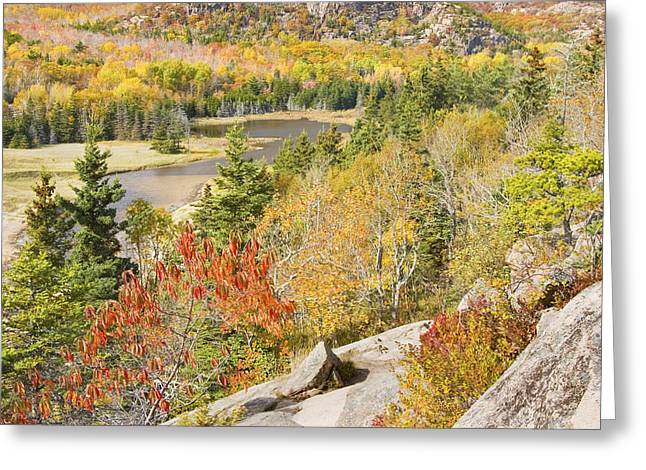 Sand Beach In Fall From Great Head Acadia National Park Photo Greeting Card by Keith Webber Jr