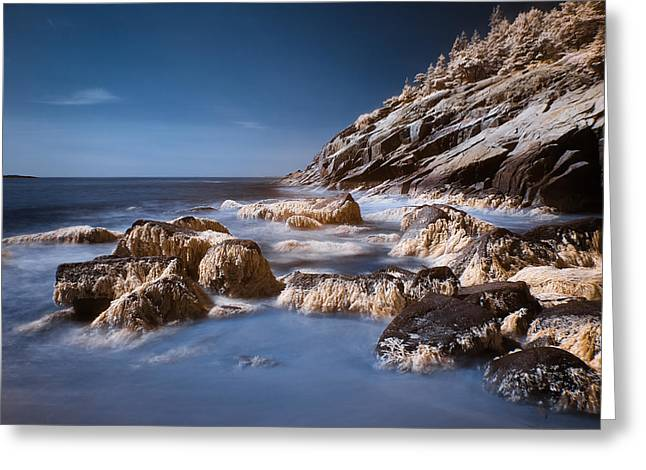 Greeting Card featuring the photograph Sand Beach by Steve Zimic